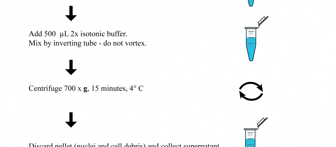 Graphical Chemical Mito Prep_6_3_20 ANN