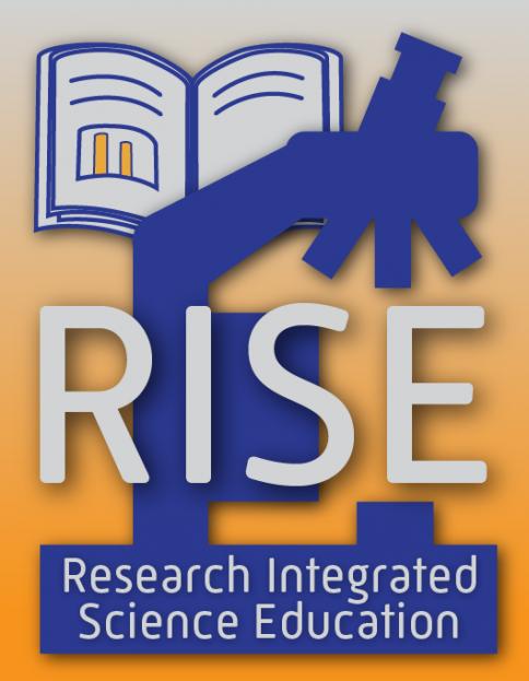 RISE Program Logo
